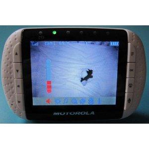 Дисплей видеоняни Motorola MBP36 в экономичном режиме